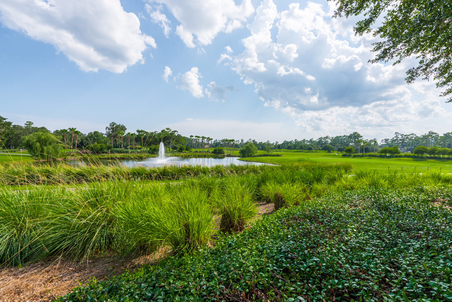 level_exposure_real_estate_photography_ponte_vedra_florida_local_market-9